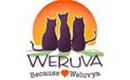 Weruva for Cats